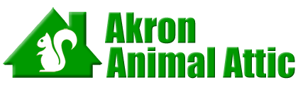 Akron Animal Attic